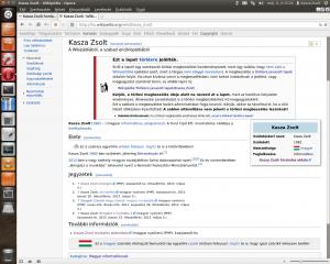 kasza zsolt wikipédia