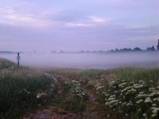köd a gát tövében