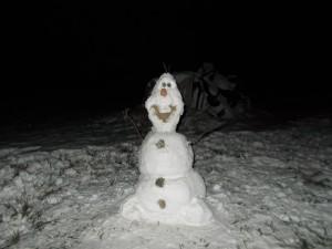 Disney: Olaf