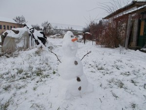real Olaf